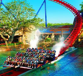 Busch gardens tampa address